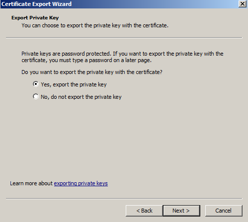 Windows SSL Export 10