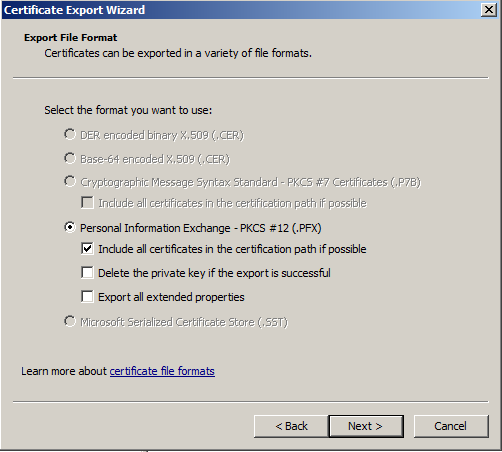 Windows SSL Export 11
