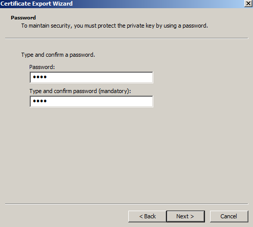 Windows SSL Export 12